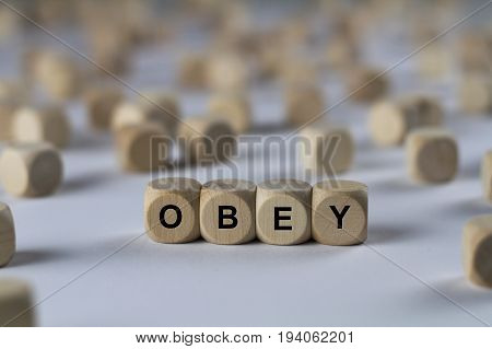 obey - cube with letters sign with wooden cubes poster