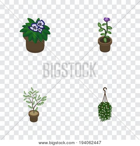 Isometric Houseplant Set Of Flowerpot, Fern, Flower And Other Vector Objects. Also Includes Flower, Pot, Flowerpot Elements.