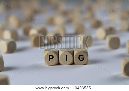 Pig - Cube With Letters, Sign With Wooden Cubes