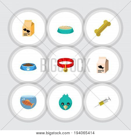Flat Icon Pets Set Of Fishbowl, Osseous, Sparrow And Other Vector Objects. Also Includes Bird, Nutrient, Wing Elements.
