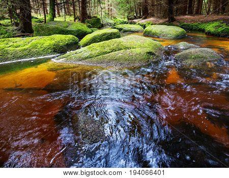 brook in forest in Sumava Czech republic Europe