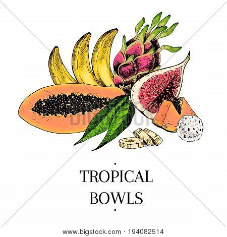 Vector hand drawn exotic fruits. Engraved smoothie bowl ingredients. colored icons. Tropical sweet food.Papaya banana fig pitahaya. Use for exotic restaurant food party