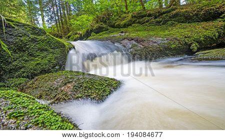 brook in forest (Jelení potok Sumava Czech republic Europe)