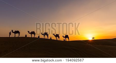 As the sun sets over the sand dunes of the Thar desert of Rajasthan the camel caravan prepares to camp before the cold of the desert night sets in. I captured this shot close to the India-Pakistan border after attending the annual Desert Festival and Came