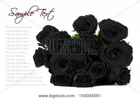 Fantasy black roses bouquet with sample text space on white background