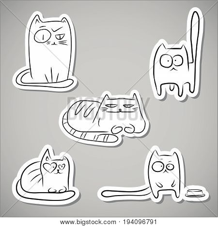 Paper Funny Cats