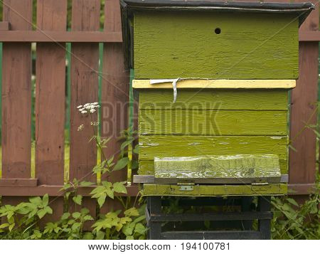 Beehive seems abandoned standing next to the wooden fence in a backyard garden