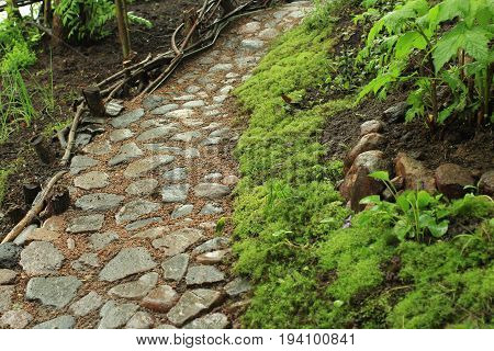 the Old cobblestone footpath in the garden