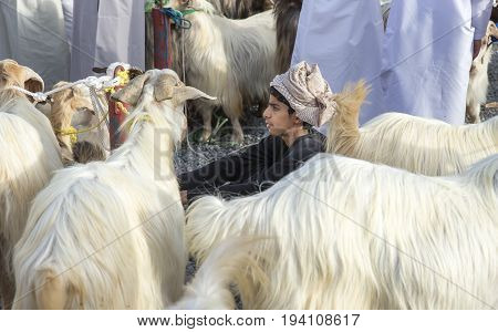 Nizwa Oman June 23rd 2017: omani man in traditional clothing at a habta market selling his goats