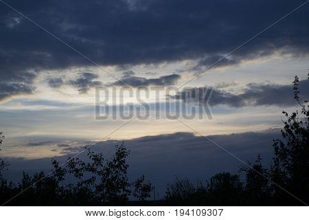 Прекраснейшее небо,облака и закат. Кроны деревьев чудно вписываются в постановку кадра,наполняя его контрастом.