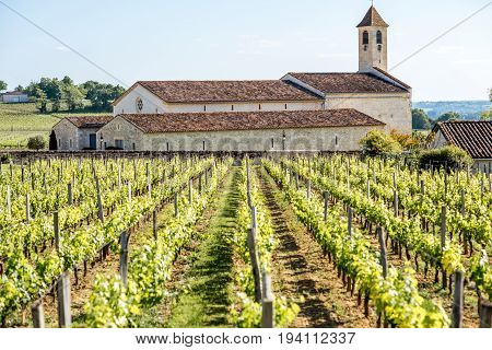 Beautiful landscape view on the vineyards in Saint Emilion village near Bordeaux in France