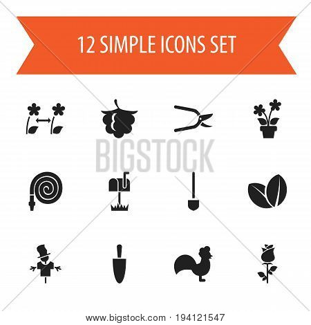 Set Of 12 Editable Gardening Icons. Includes Symbols Such As Blooming, Plant Cutter, Bugaboo And More. Can Be Used For Web, Mobile, UI And Infographic Design.