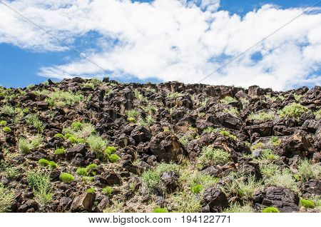 Petroglyph National monument park in Albuquerque New Mexico with closeup of volcanic rocks