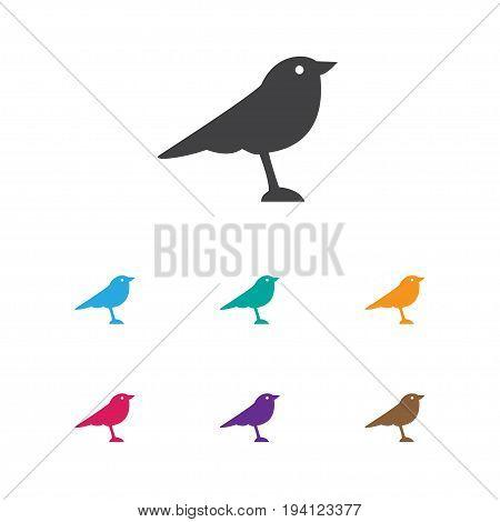 Vector Illustration Of Animal Symbol On Thrush Icon. Premium Quality Isolated Catbird Element In Trendy Flat Style.