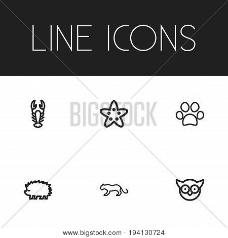 Set Of 6 Editable Zoology Icons. Includes Symbols Such As Dog Steps, Predator Bird, Lynx And More. Can Be Used For Web, Mobile, UI And Infographic Design.