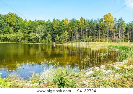Burke Lake landscape in Virginia with water during summer in peaceful landscape