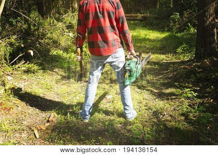 Lumberjack in a plaid shirt with a chainsaw on the background of fallen trees