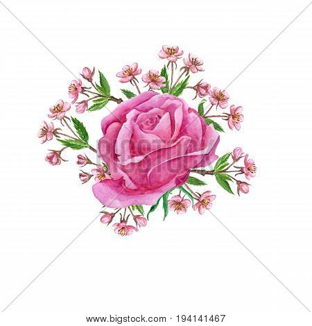 watercolor flowers composition drawing at white paper background, bouqet with rose and cherry blossoms