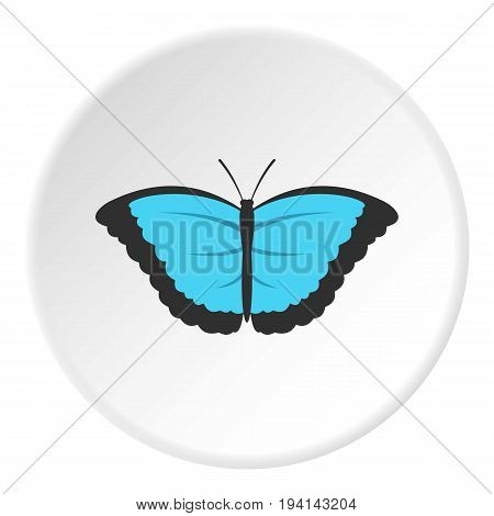 Butterfly with big wings icon in flat circle isolated vector illustration for web