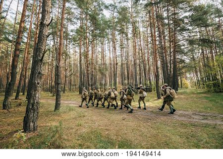 Dyatlovichi, Belarus - October 1, 2016: Group Of Re-enactors Dressed As Soviet Russian Red Army Infantry Soldiers Of World War II Marching Along Forest Road At Summer Autumn Season.