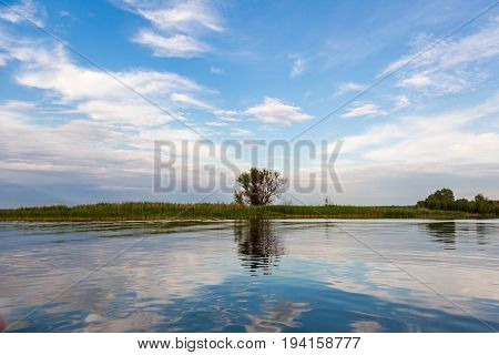 An idyllic landscape of lake shore with tree and bulrush, beautiful deep sky and reflection.
