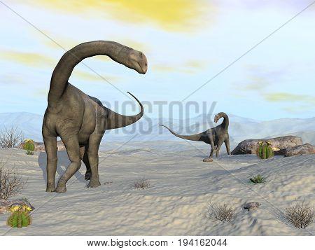 Two brontomerus dinosaurs walking in the desert - 3D render