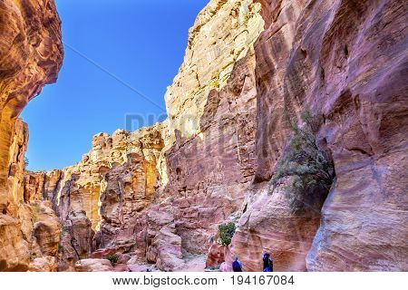 Outer Siq Canyon Hiking To Entrance Into Petra Jordan Petra Jordan. Colorful Yellow Pink Canyon becomes rose red when sun goes. The rose red can become blood red. Reds are created by magnesium in sandstone.