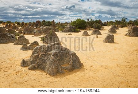 Yellow sand dunes and limestone pillars Pinnacles Desert in the Nambung National Park Western Australia.With a lot of footprints of tourists on the sand