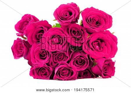 Sweet pink roses bouquet on white background.