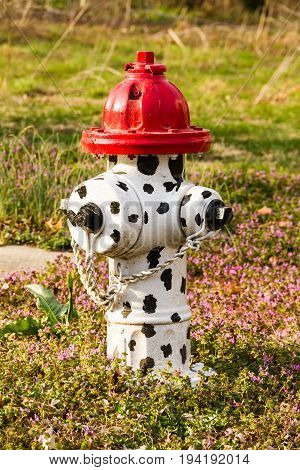 White fire hydrant with black spots on it with a red top