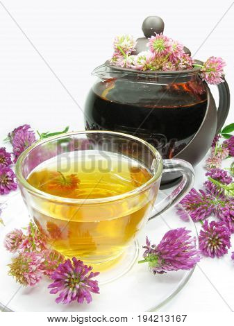 herbal tea with clover flowers essence and tea-pot