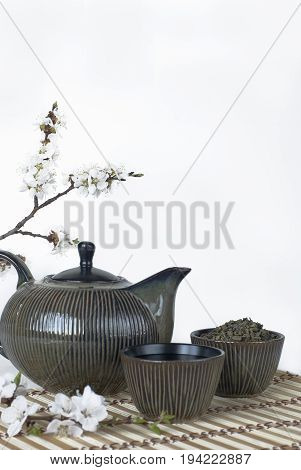 Teapot, cups and a blooming cherry twig