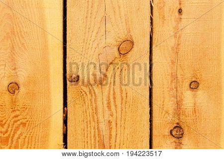 Detail of larch wood. Wood background. Place for your text.