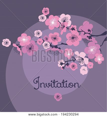 pale color cherry blossom in the night. vector illustration