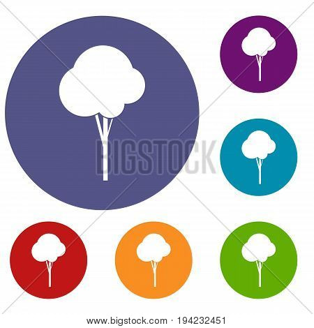 Fluffy tree icons set in flat circle reb, blue and green color for web