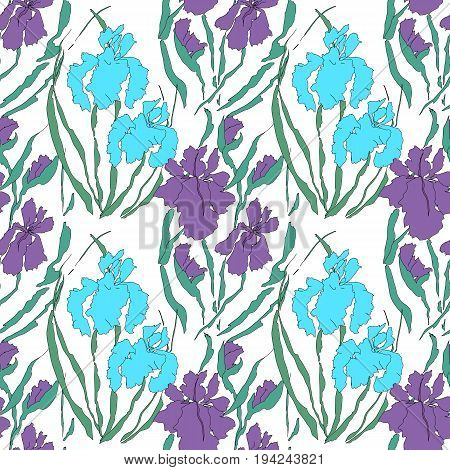 Vector seamless pattern with irises. Hand-drawing illustration. Stylized traditional Chinese painting, Japanese art sumi-e