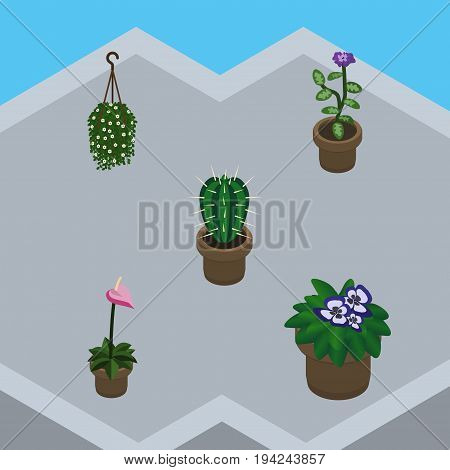Isometric Plant Set Of Flowerpot, Flower, Grower And Other Vector Objects. Also Includes Hanging, Blossom, Cactus Elements.