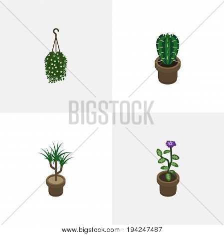 Isometric Houseplant Set Of Peyote, Houseplant, Flower And Other Vector Objects. Also Includes Blossom, Pot, Cactus Elements.