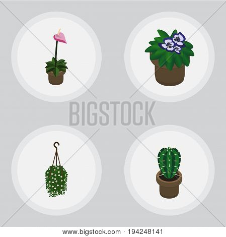 Isometric Plant Set Of Flowerpot, Blossom, Peyote And Other Vector Objects. Also Includes Blossom, Cactus, Flowerpot Elements.