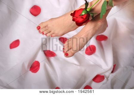 Red Toenails And Rose