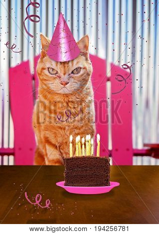 a orange cat with a piece of cake on a plate with candles and streamers for birthday card or other themed products