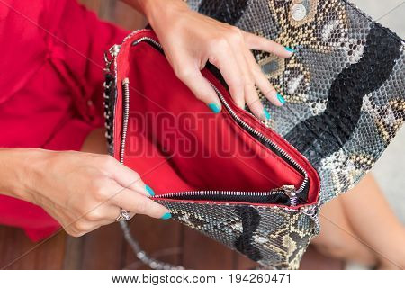 Fashionable woman holding leather snakeskin python bag. Elegant outfit. Close up of purse in hands of stylish lady.