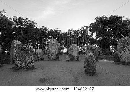 Menhirs In A Cromlech Close To Evora In Portugal