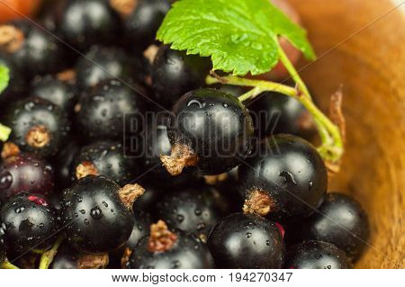 Fresh black currant on a wooden table. Healthy fruit full of vitamins and antioxidants. Healthy food