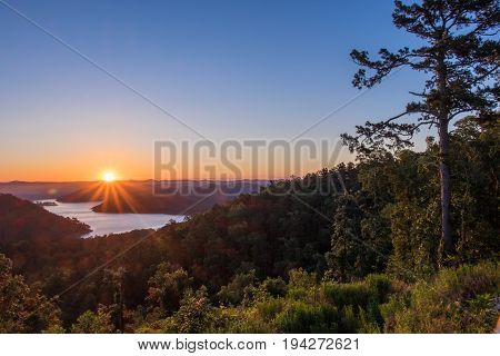 Sunrise Over the Mountains beside a towering Pine