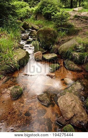 Mountain stream in Schierke at the foot of the Brocken in the Harz National Park in Germany