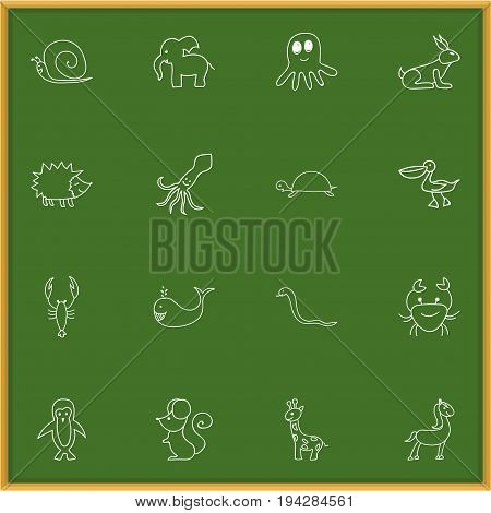 Set Of 16 Editable Zoology Icons. Includes Symbols Such As Cachalot, Polar Bird, Elephant And More. Can Be Used For Web, Mobile, UI And Infographic Design.