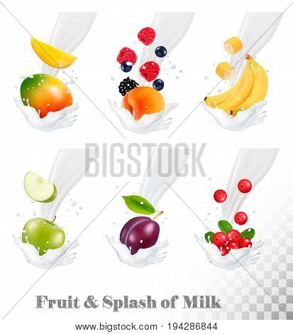 Big collection of icons of fruit and berries in a milk splash. Strawberry apple plum cranberry banana peach blackberry blueberry. Vector.