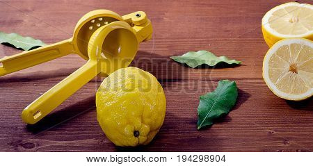 Squeezer And Lemons