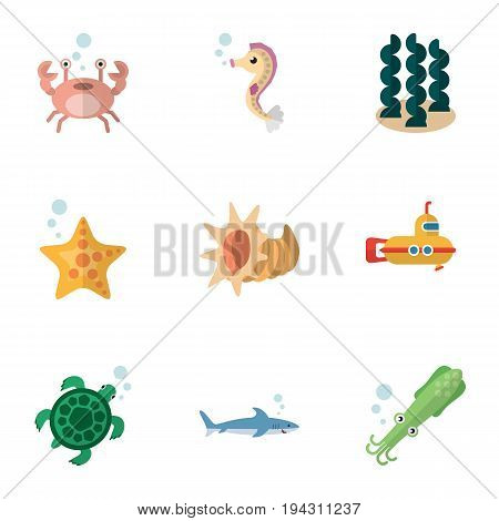 Flat Icon Sea Set Of Periscope, Hippocampus, Cancer And Other Vector Objects. Also Includes Alga, Horse, Scallop Elements.